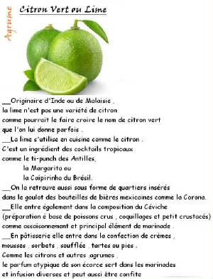 FRUITS_exotic/fruits_agrumes_citron_vert.jpg