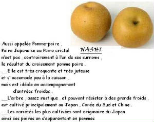 FRUITS_exotic/fruits_exotiques_asian_pear_nashi.jpg